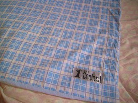cool mat 20120906_02s