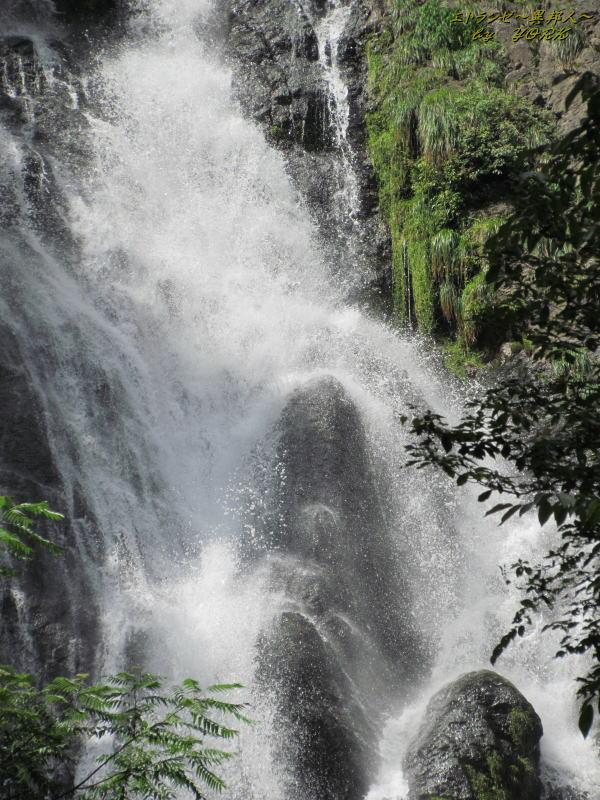 4426神庭の滝アップ120819