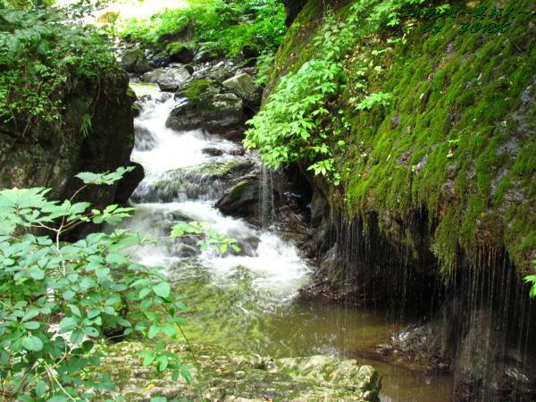 4405衣掛の滝(神庭の滝)120819
