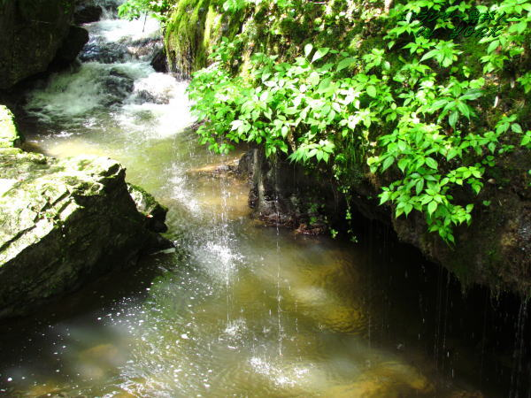 4404衣掛の滝(神庭の滝)120819
