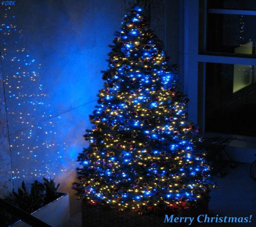 スマホ用 0090クリスマスツリー960×854