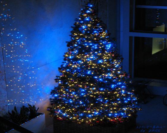 壁紙 0090クリスマスツリー1280×1024