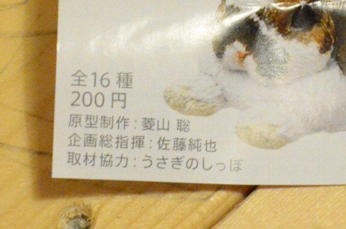 2012_100520110009.jpg