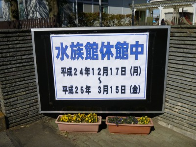 埼玉水族館