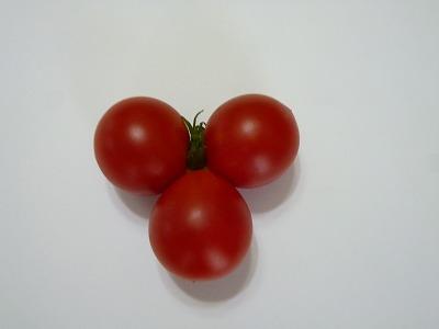 三つ子トマト