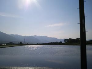 201205263.jpg