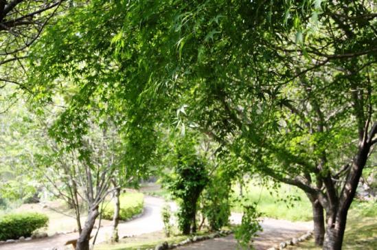 fudoki02_20120528153814.jpg