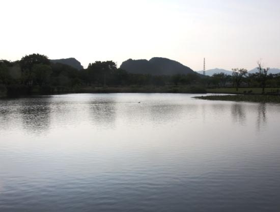 kasiwabara03_20120624171242.jpg