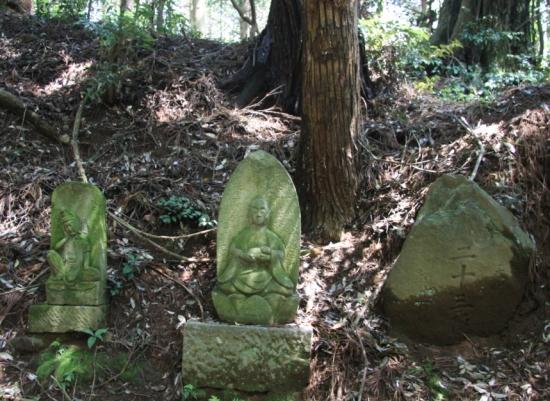 maruyama04.jpg
