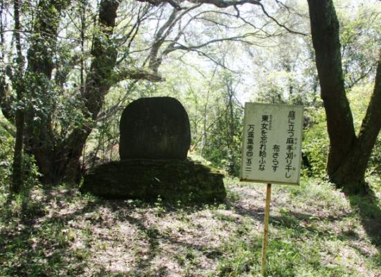 maruyama08.jpg