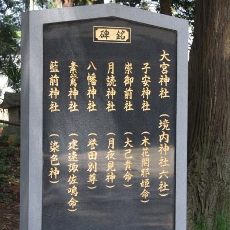 oomiya03_20120520202451.jpg