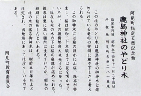yadorigi02.jpg