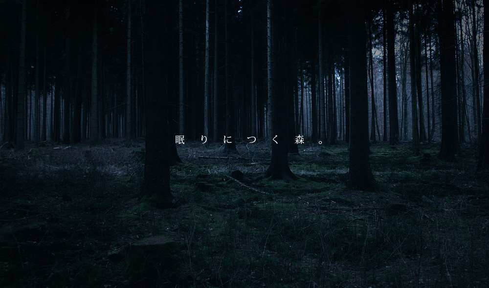 forest0005.jpg
