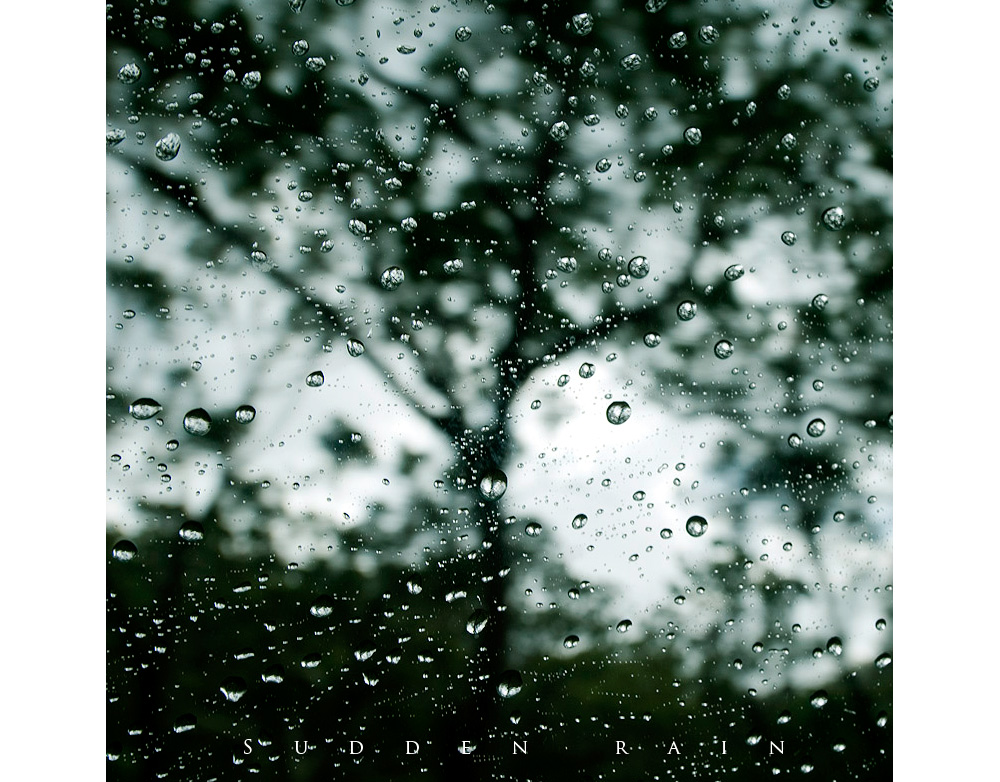 rain0003.jpg