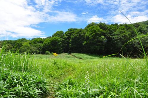 1竜神平13.07.15