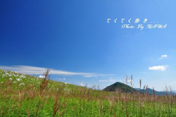 4天狗高原13.08.28