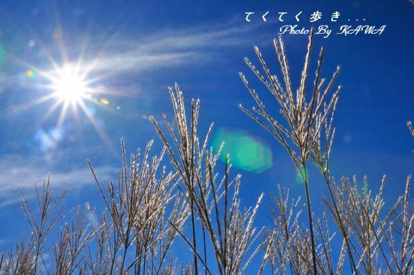 5天狗高原13.08.28