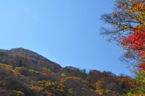 4大川嶺13.10.29