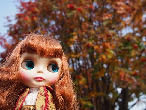 落ち葉のコンチェルト、懐かし~。