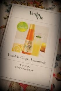 レモンジンジャー (7)