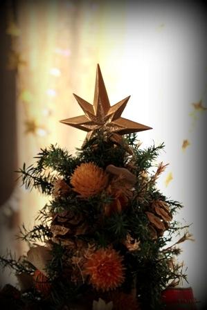 クリスマスディスプレイ 2014 (6)