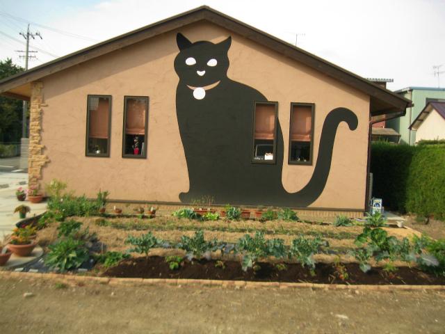 Café猫の散歩道の付属菜園1