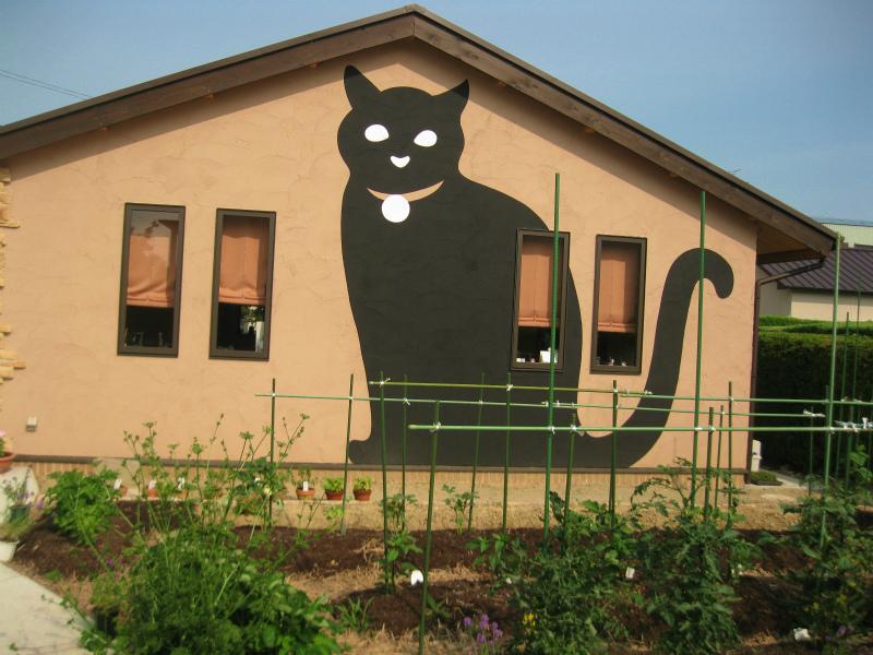 Café猫の散歩道(24年6月24日)