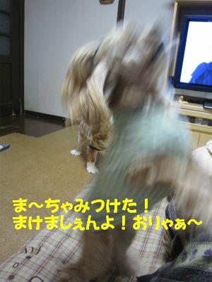 画像 860