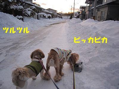IMG_4612.jpg