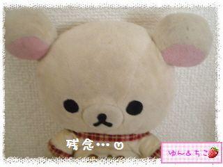 ちこちゃんのアボカド観察日記★17★あれっ…変化してましゅ-4