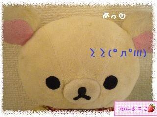 ちこちゃんの観葉植物観察日記★4★ぐ~ん-3