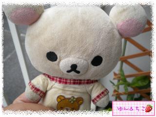 ちこちゃんのプランターガーデニング日記★5★マンデビラ①-1