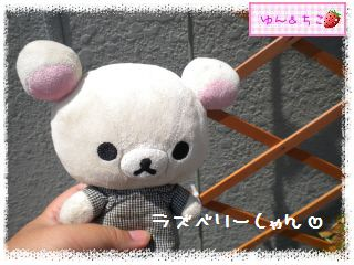 ちこちゃんのラズベリー観察日記★3★-1