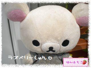 ちこちゃんのラズベリー観察日記★6★-1