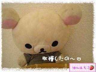 ちこちゃんの夏野菜観察日記2013★しし唐しゃん★-1