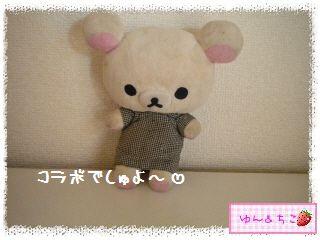 小枝×リラックマ(10周年記念暴走★36★)-1