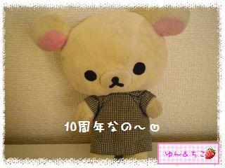 リラックマかまぼこ10周年バージョン(10周年記念暴走★47★)-1