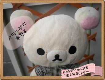 ちこちゃんのプランターガーデニング日記★11★マンデビラ⑤-1