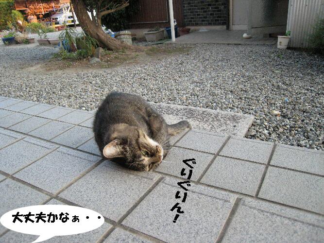 4_2013091500164589d.jpg