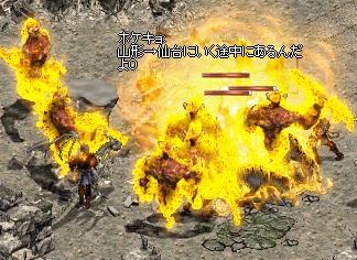LinC45203.jpg