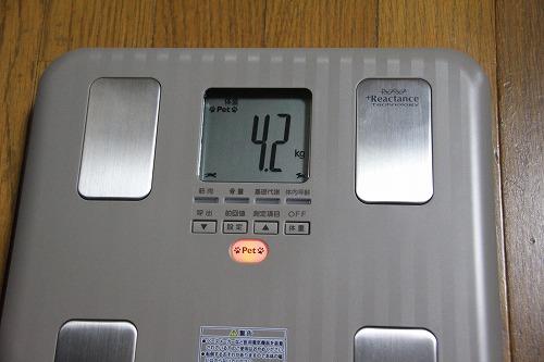 ブログNo.84(体重測定)6