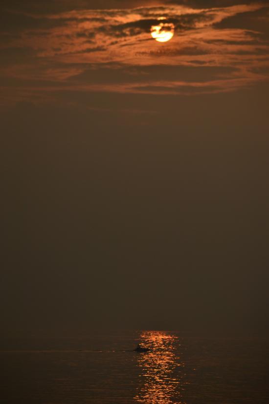 夕日のみ3