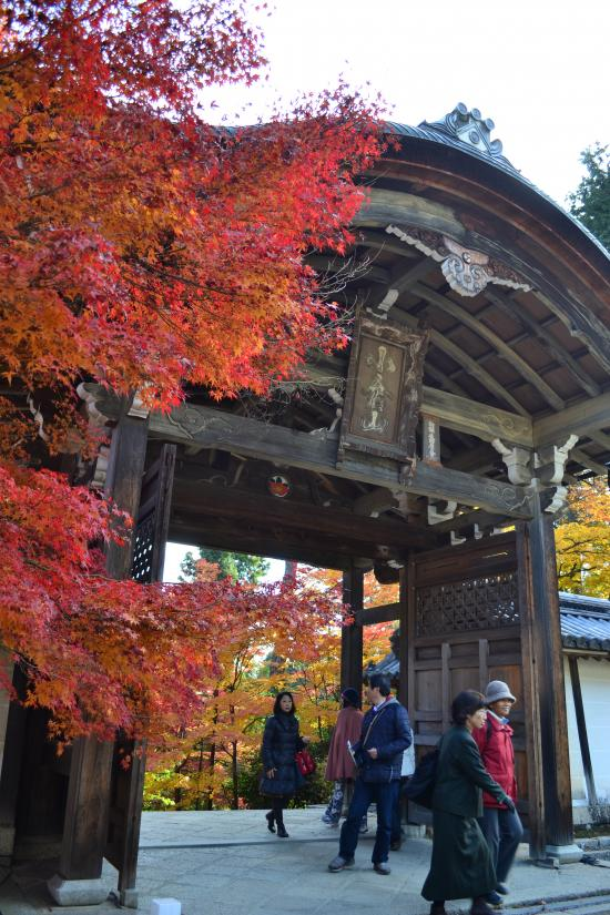 二尊院の門2