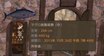 AA20131027-09.jpg