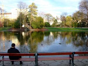 市立公園2