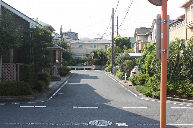 IMG_2736.jpg