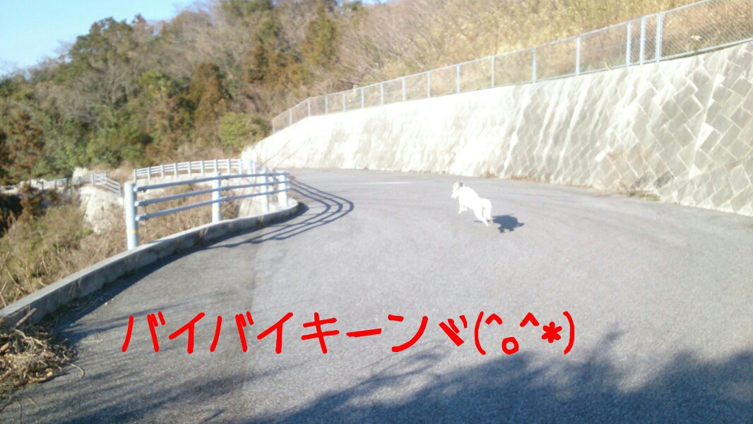 fc2_2014-01-27_20-07-29-346.jpg