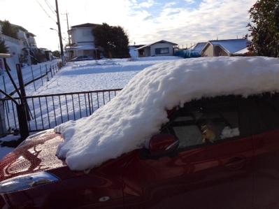 雪国気分と、大人のたけのこの里。