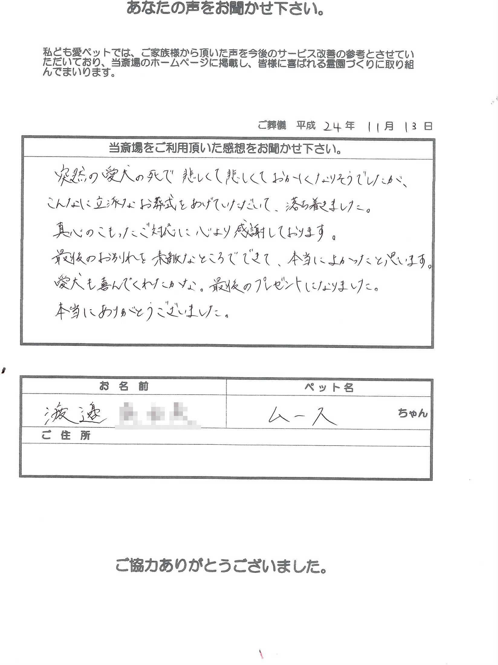 k121113-1.jpg