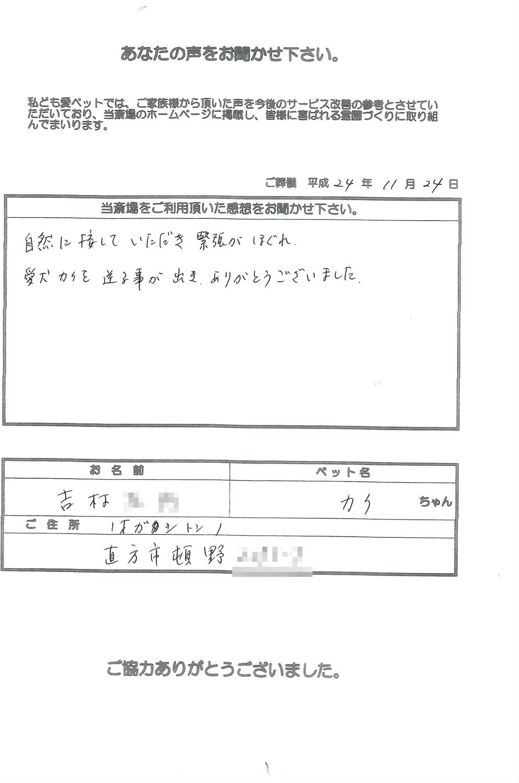 k121124-2.jpg